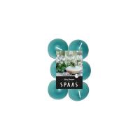 12 dišečih čajnih sveč  SPAAS - Minty Hamman
